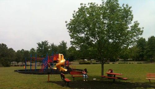 Leathertree Park: Madison