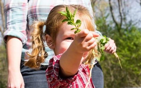 Growing Healthier & Smarter Kids in the Garden