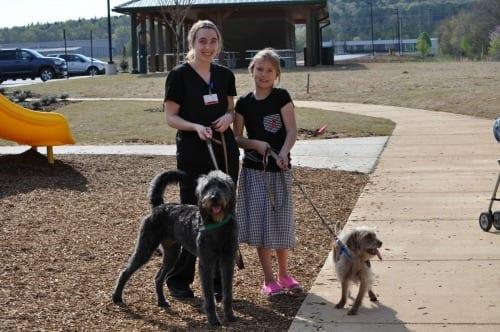 Southside Park dogs