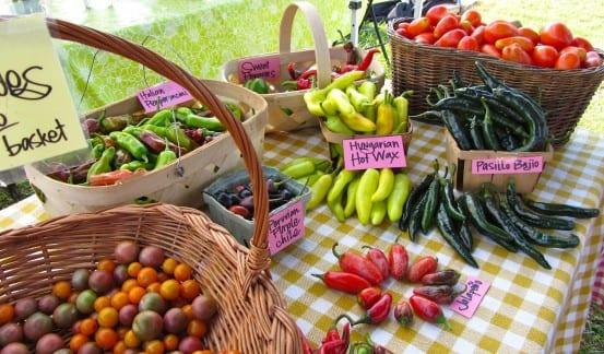 Local Farmers' Markets and U-Picks
