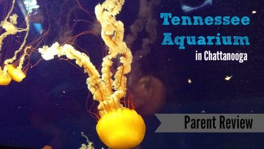 Tennessee Aquarium in Chattanooga, TN