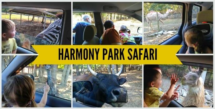 Harmony Park Safari in Huntsville