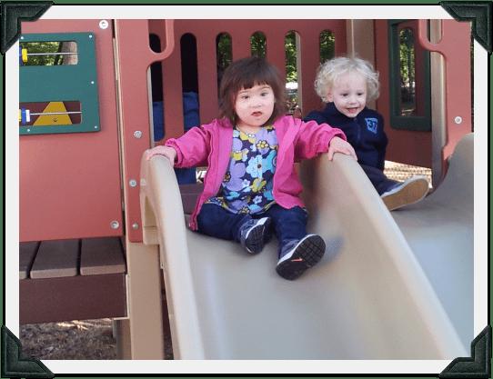 Rise Inclusion slide