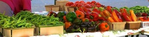 Fresh produce is plentiful at the Tuesday Farmer's Market!