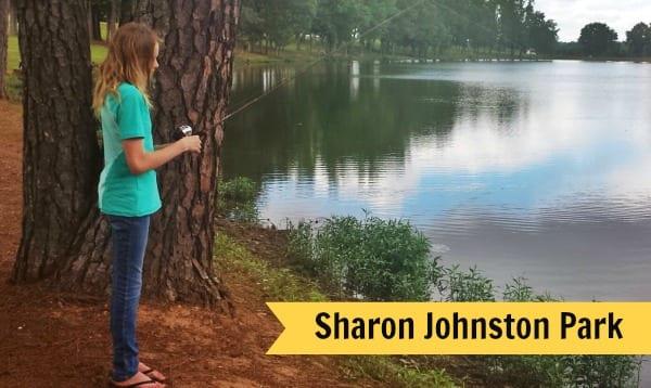 Sharon Johnston Park Review